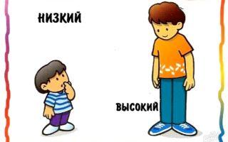 Примеры антонимов в русском языке