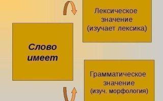 Что изучает морфология русского языка?