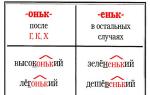Какое правописание слов с суффиксом оньк?