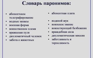 Какие существуют паронимы в русском?