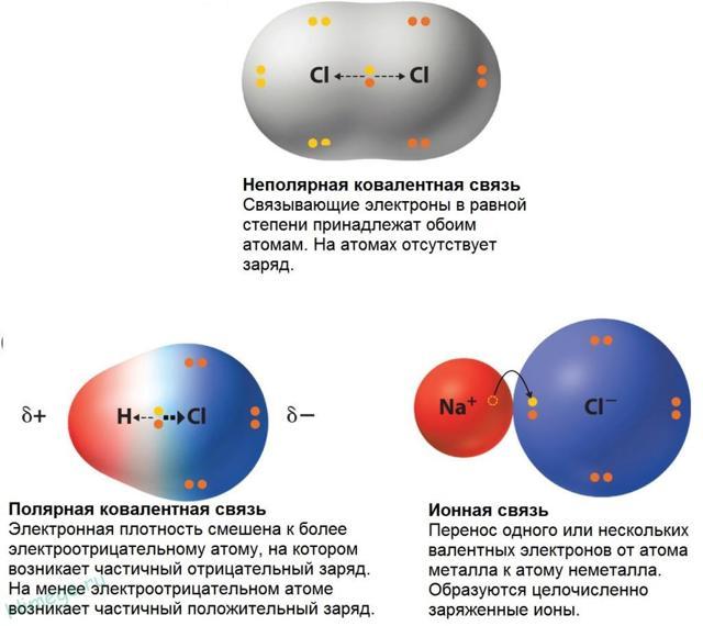 Ковалентная полярная и неполярная связи, что это такое и как различать связь