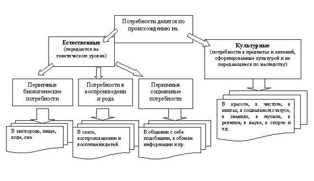 Что такое потребности человека: определение и описание, их типы и особенности
