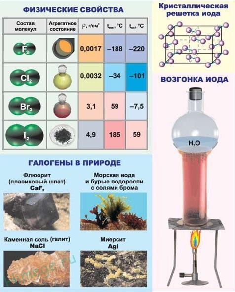 Галогены: список элементов и химические свойства фтора, брома и йода, таблица Менделеева