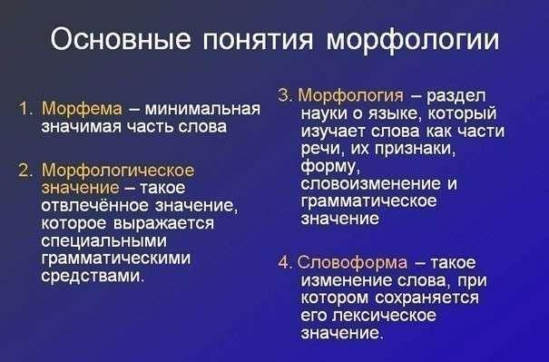 Морфология русского языка: разделы, основные понятия и правила