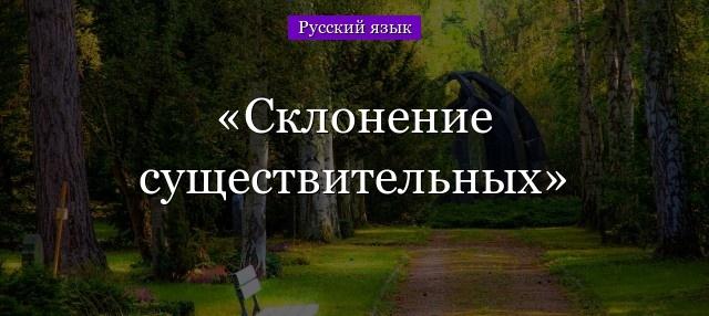 Что такое склонение существительных в русском языке: как правильно склонять слово