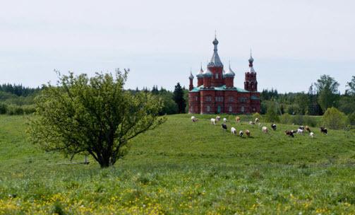 Исток великой русской реки Волга: где находится, как до него добраться, какие места стоит посетить