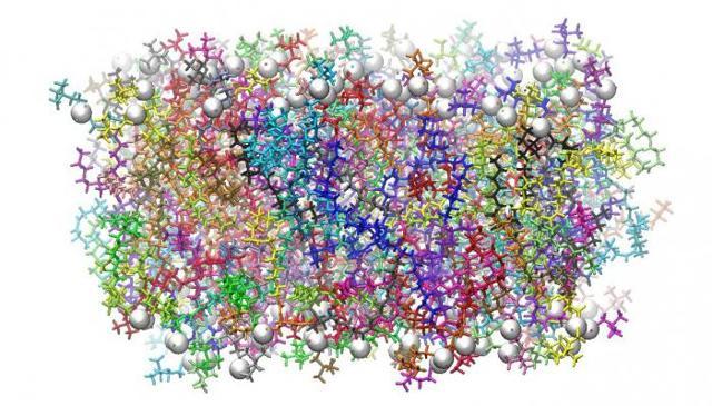 Плазматическая мембрана: основные свойства, строение и функции плазмолеммы